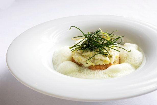 Panierowana kasza pęczak z emulsją z pora i wegańskim serem cheddarz wegańskiego menu restauracji Biały Królik. Foto: Joanna Ogórek.