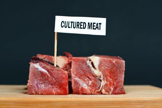 Korzyści płynące z produkcji mięsa hodowanego komórkowo zwiększają popyt na ten produkt. Fot. Shutterstock.com