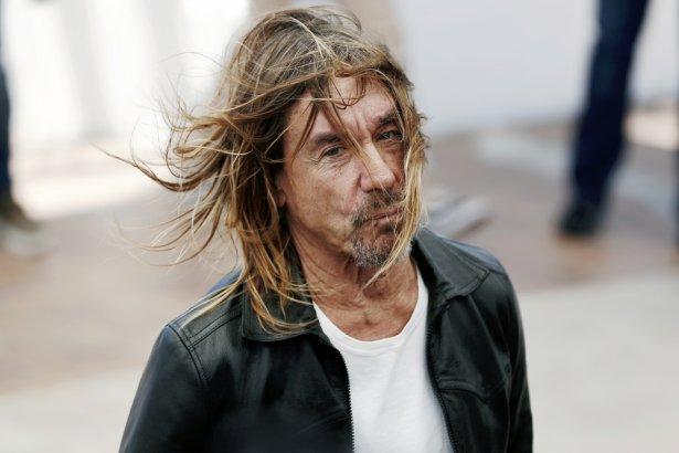 Iggy Pop został twarzą kampanii piwa Tenczynek Marakuja. Zdjęcie: Shutterstock.com