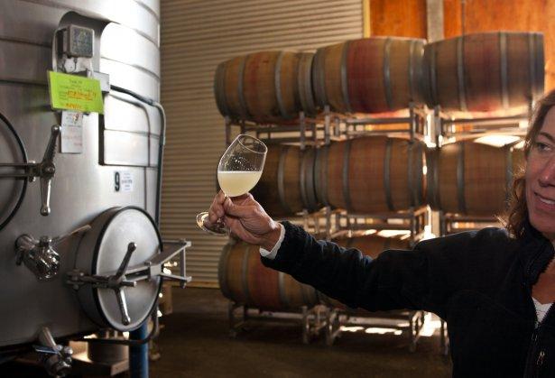 Produkcja wina kalifornijskiego. Zdjęcie: materiały prasowe